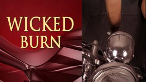 Wicked Burn (Realm Enforcers #3) by Rebecca Zanetti